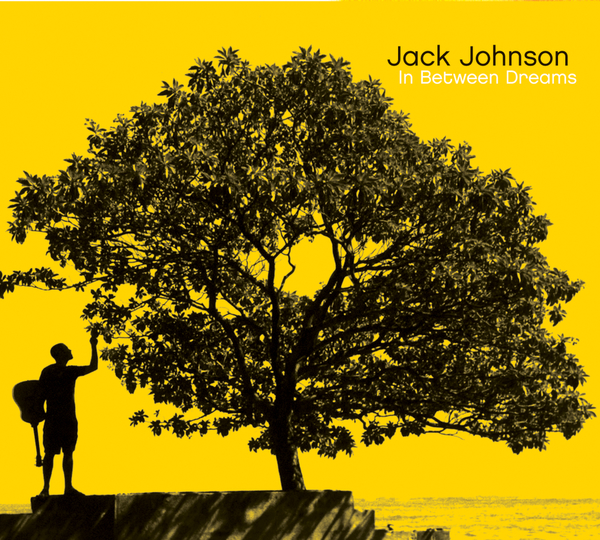 If I Could by Jack Johnson